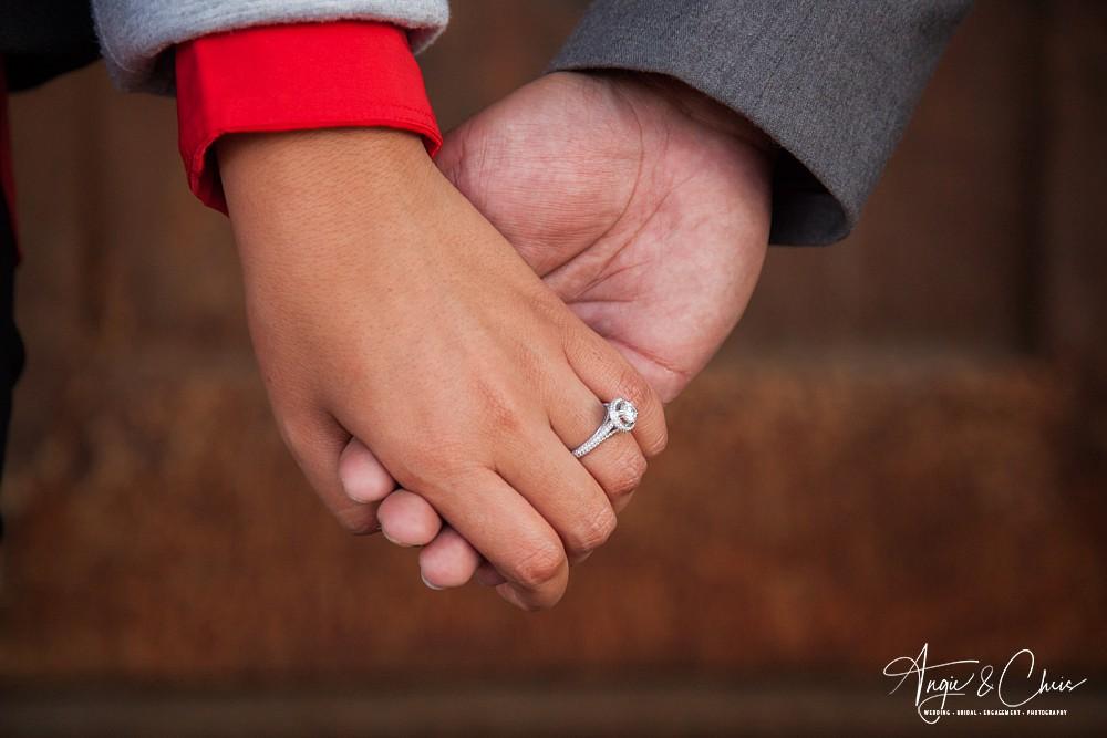 Sonia-Andrew-Engaged-126.jpg