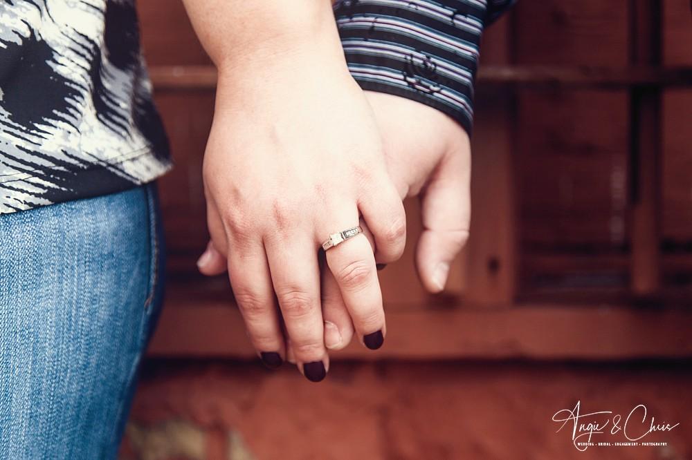 Andrea-Lance-Engaged-56.jpg
