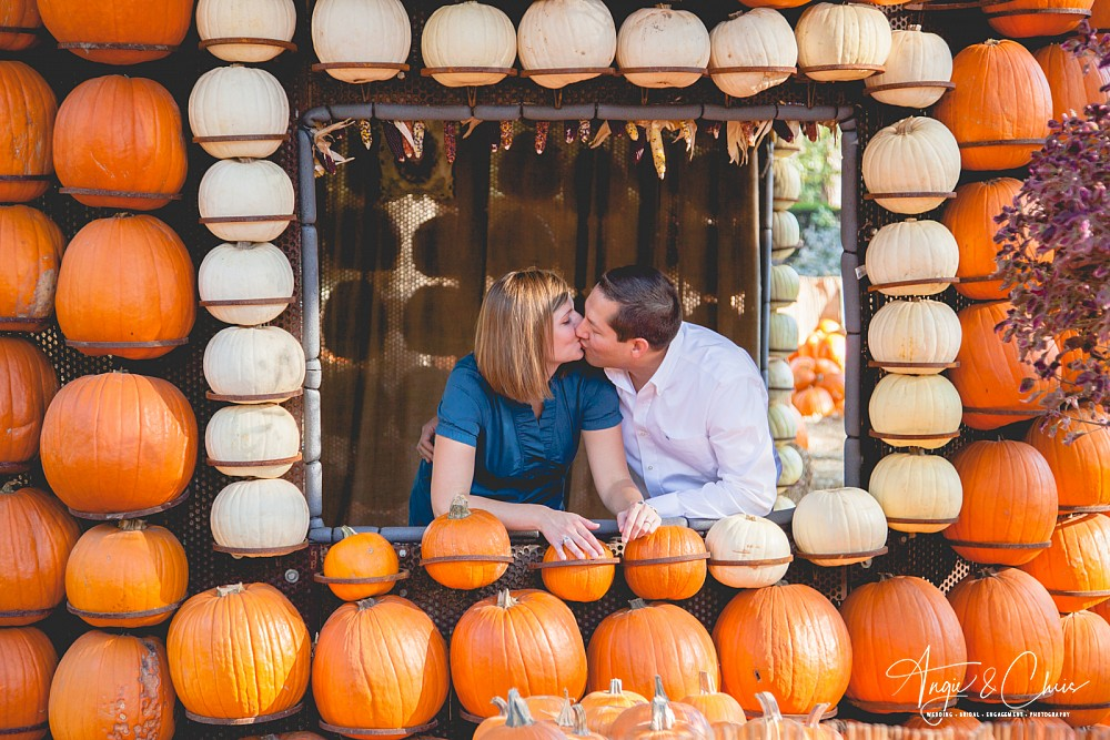 Stacey-Randy-Esession-78.jpg